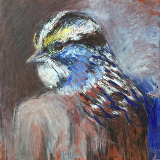 Sparrow Self Portrait