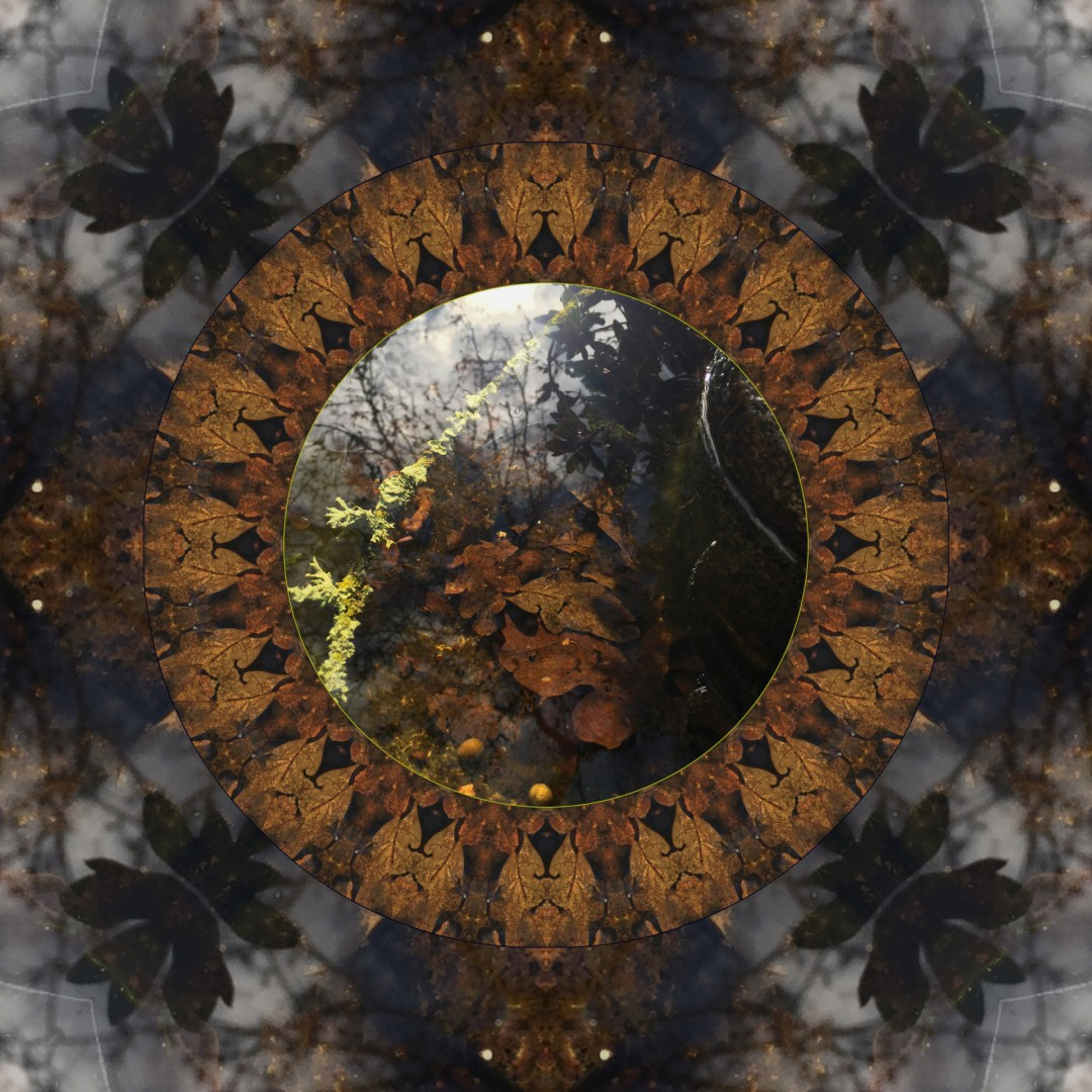 Under Over - Mandala 021619 - artwork by Elizabeth Addison: nature, environment, abstract, printmaking, digital Nature, Other, Printmaking, Paper