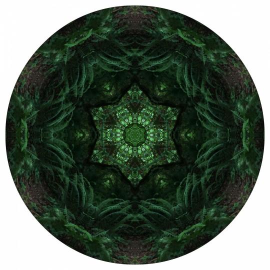 Deep Old Woods - Mandala 071019