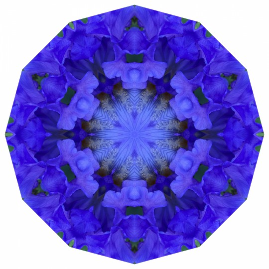 EasterOver Iris - Mandala 042119