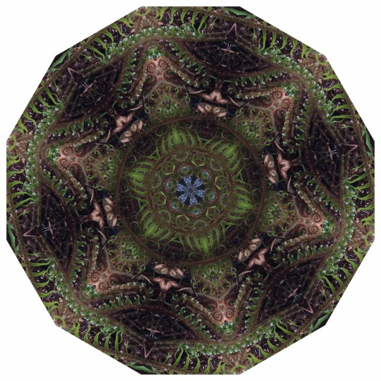 City of Trees - Mandala 042419