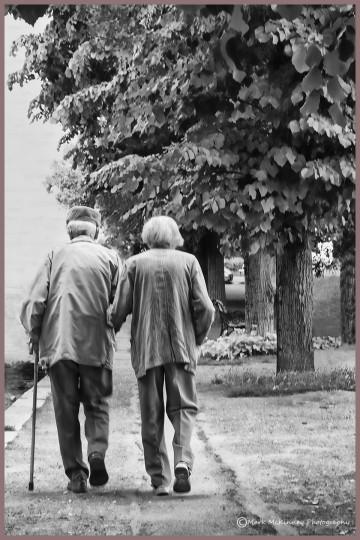 Lovers Still