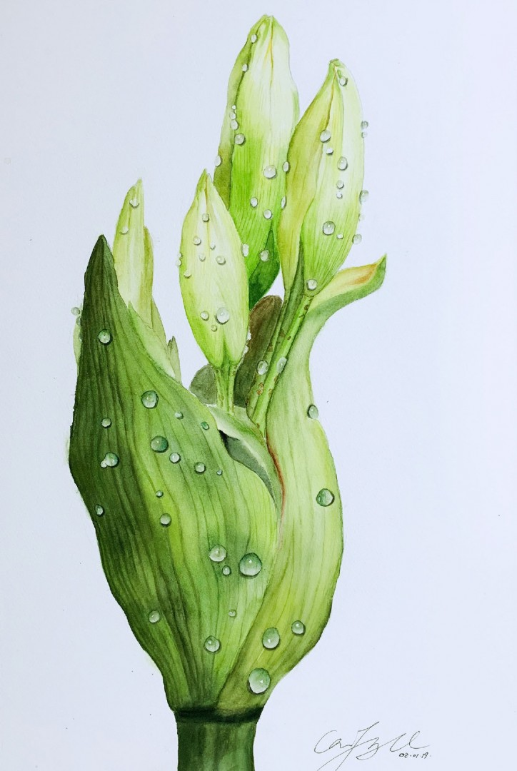 the summer green  - artwork by Fang Cai:  Nature, Realism, Watercolor, Paper