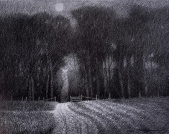 Emmert's Lane In Moonlight