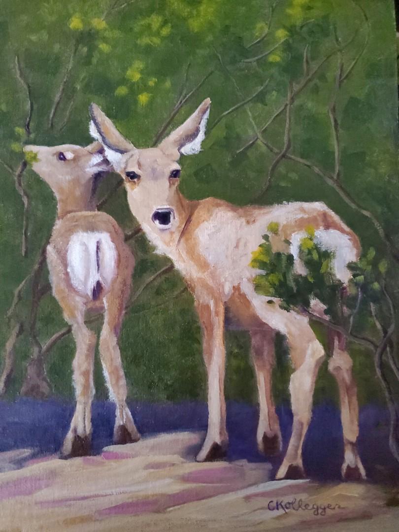 Keeping Watch - artwork by Carolyn Kollegger: Zion National Park, Mule Deer, #deer, National Park, Utah, wildlife, Western Art, Plein Air Painting Animals, Realism, Oil, Canvas
