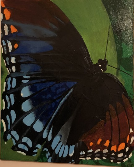 Butterfly: Manifestation of Metamorphosis