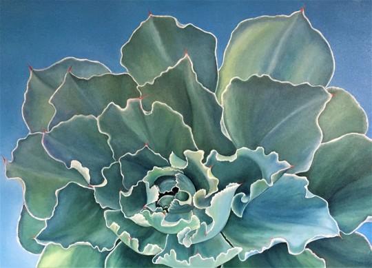 Succulent One