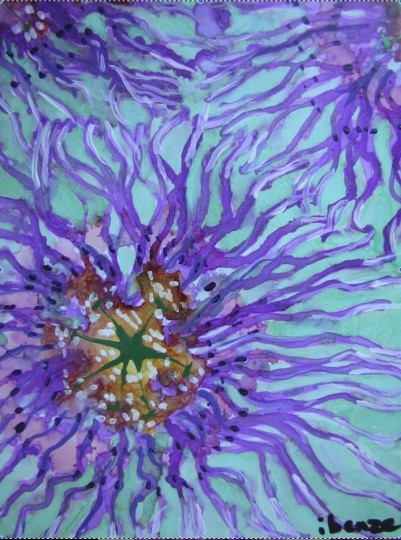 11.Passion Flowers