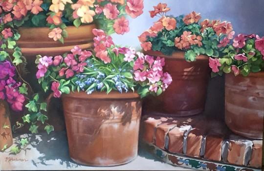 Terracotta Pots:  Carmel #2