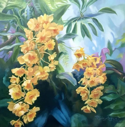 Botanical Garden:  Cascading Orchids