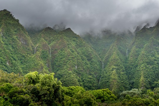 Koolau waterfalls