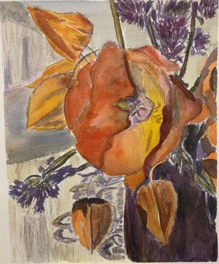 Orange Poppies Flower