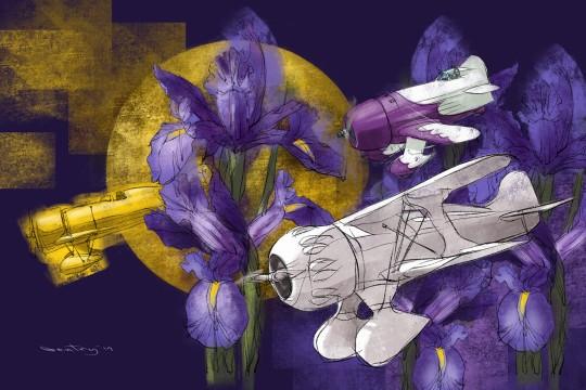 Iris Racers