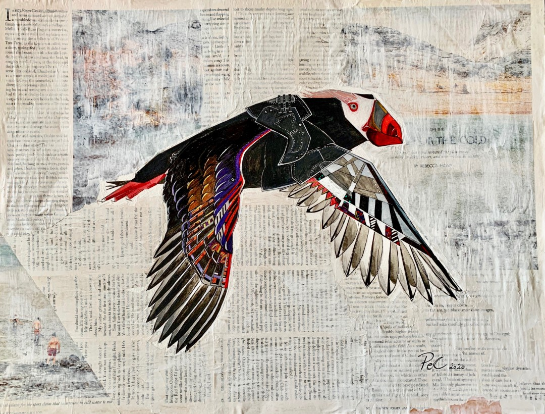 Horned Puffin - artwork by Pascale Erpelding-Cervantes:  Animals, Mixed Media, Watercolor Paper