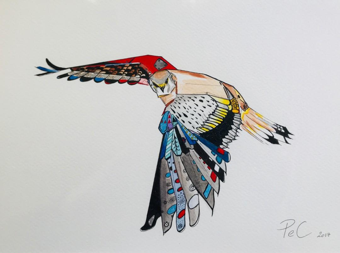 American Kestrel - artwork by Pascale Erpelding-Cervantes:  Animals, Mixed Media, Watercolor Paper