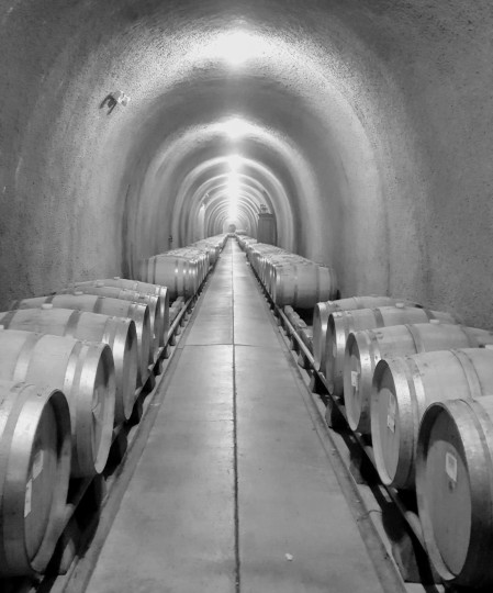 The Wine Tunnel