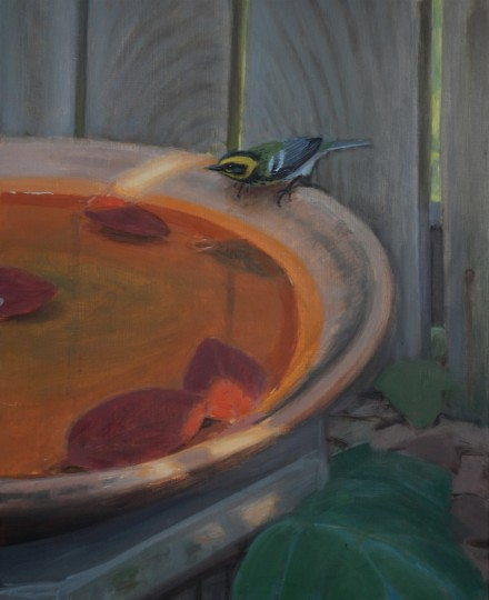 Backyard Bird Bath
