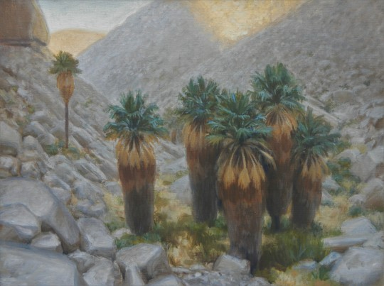 Lost Palms Canyon