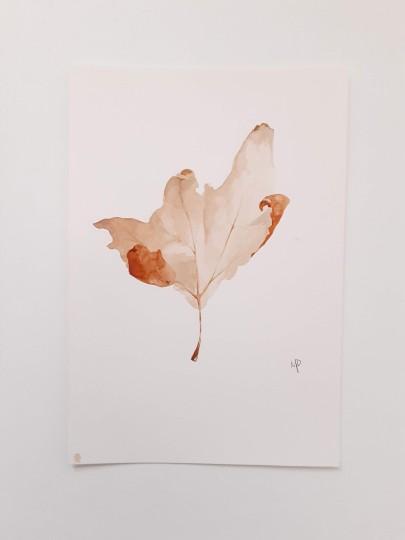 Leaf Study No. 1