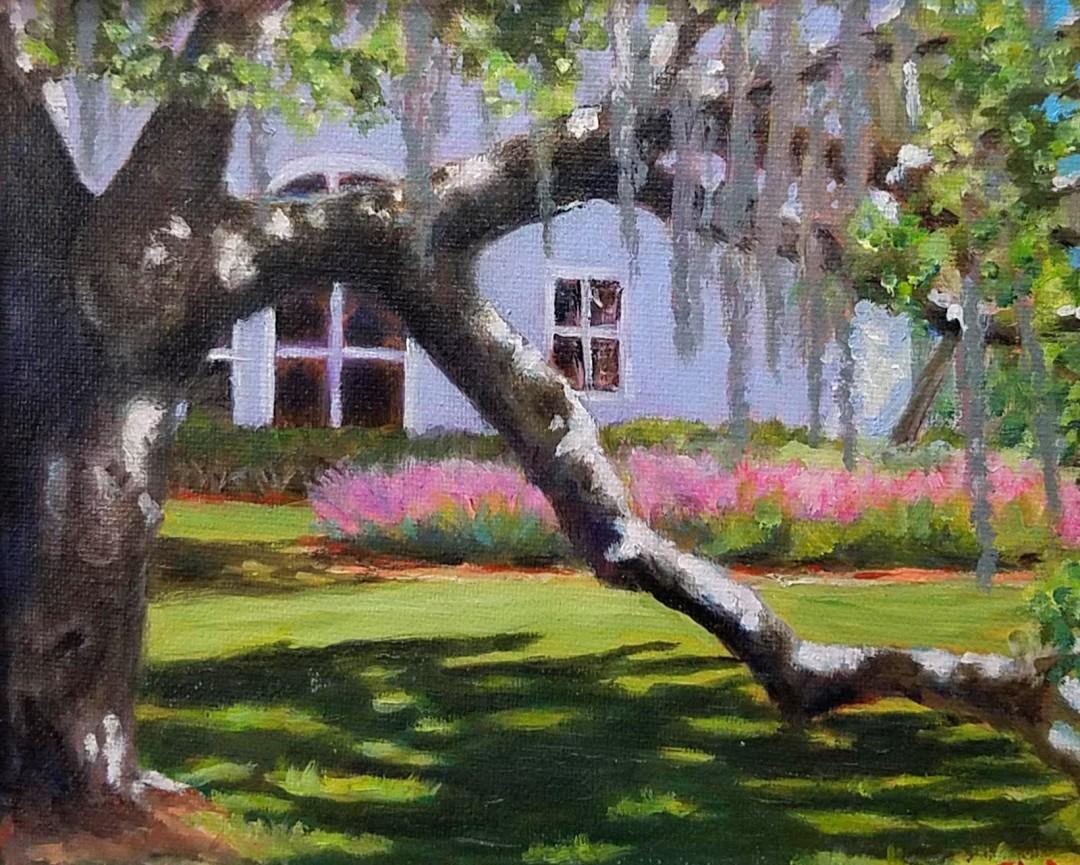 Phillippi Estate Sarasota Florida landscape oak tree park