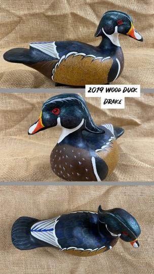 Wood Duck Drake (2019)