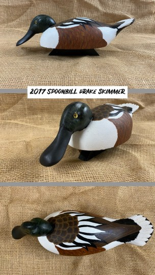 Spoonbill Drake skimmer