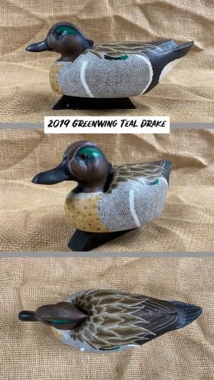 Greenwing Teal Drake