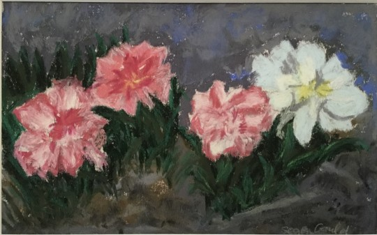 Composition in Pink and White