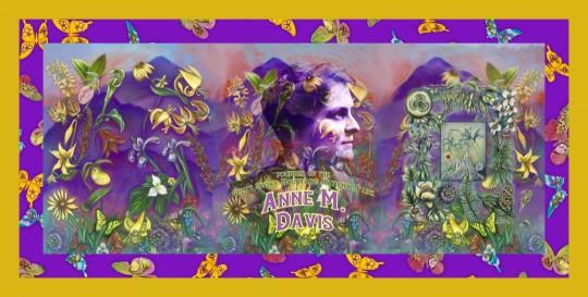 Anne Davis Founder