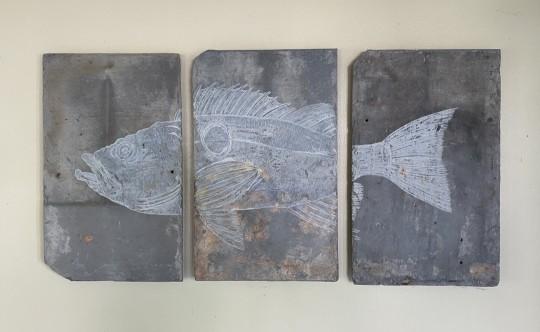 Sea Bass Triptych