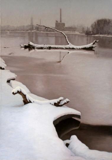 Winter Snag