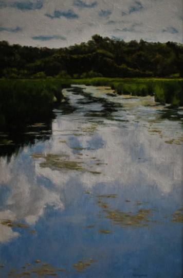 Marsh Reflections