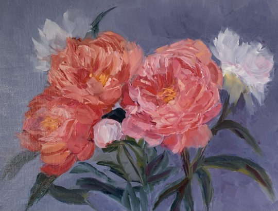 Coral, Pink and White Peonies
