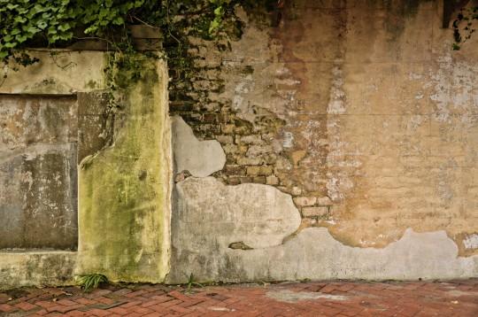 Savannah Wall