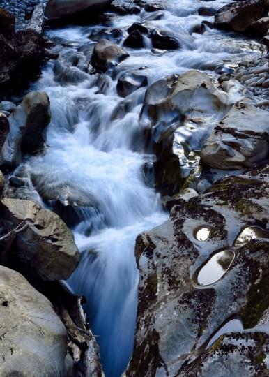 Cleddau River, New Zealand