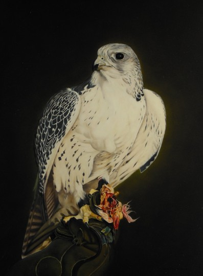 Gyr falcon with prey