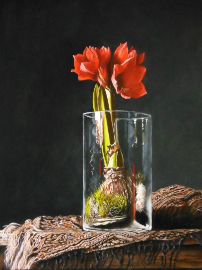 Amaryllis in glass jar on carpet