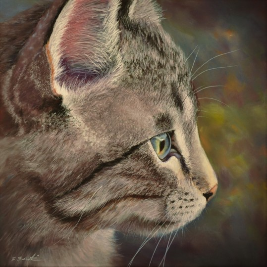 Kitty Finn
