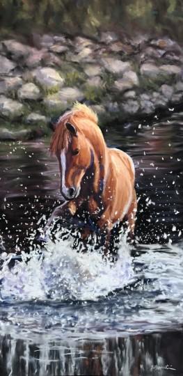 Wild Mustang in the Salt River, AZ
