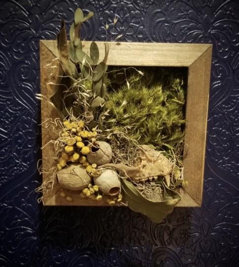 Mossy Shadow Box