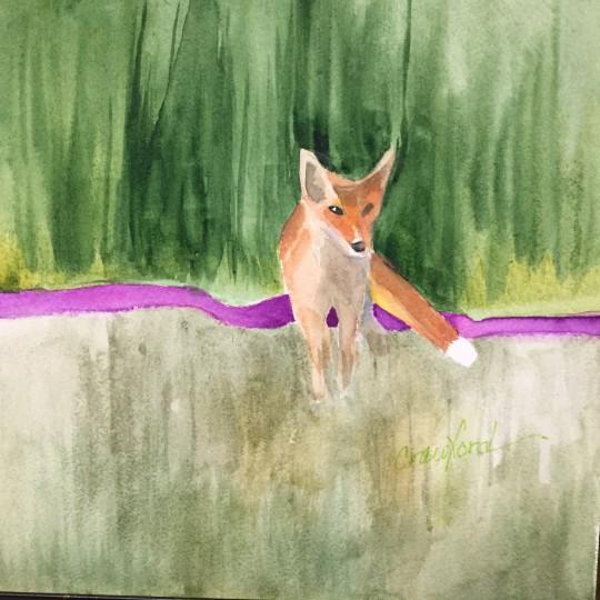 Anne's fox