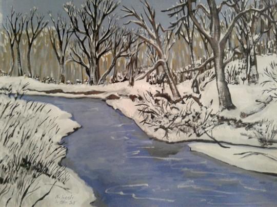 Winter Scene in Ohio