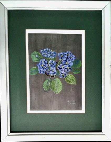 Blue African Violets on black