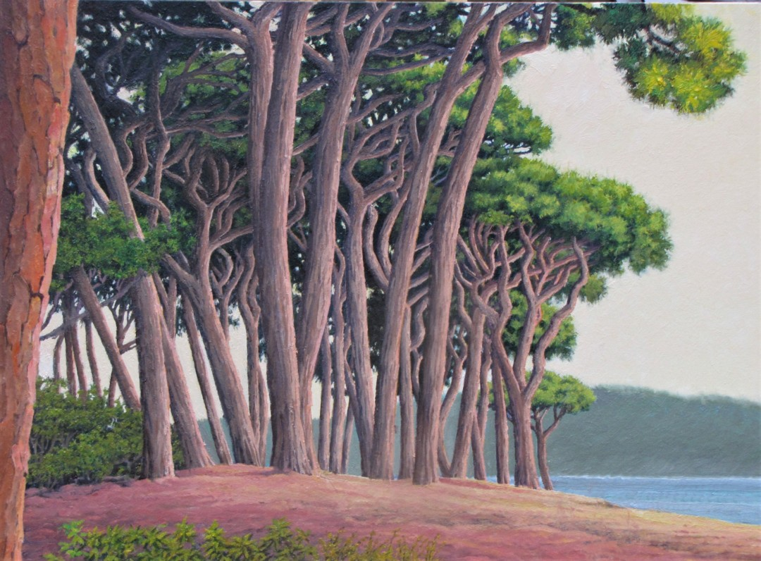 Pines at Baratti Bay - artwork by Ronald Stec:  Landscape, Realism, Oil, Wood Panel