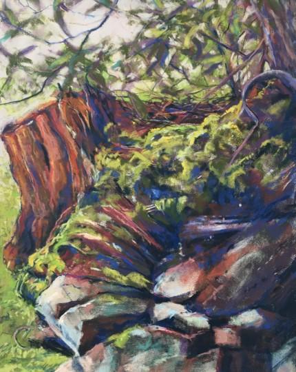 Outcrop Stump