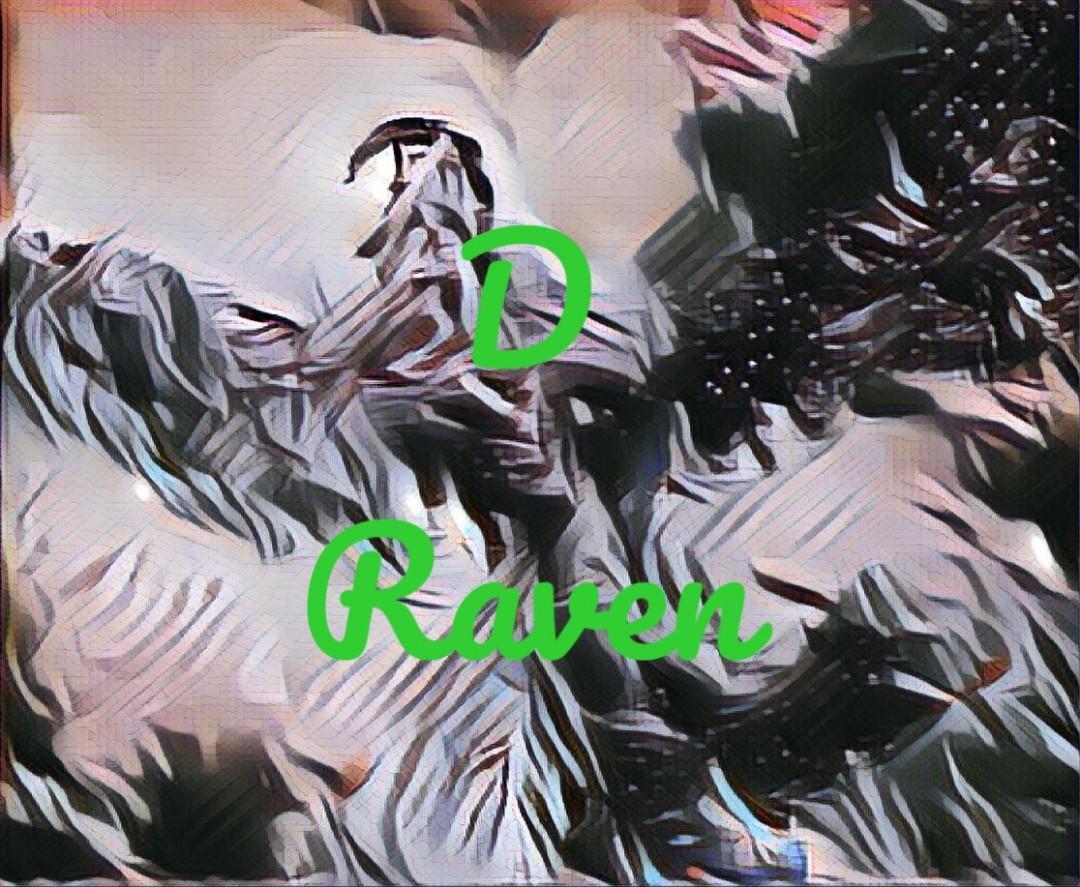 Raven 4 - artwork by Donna Raven: