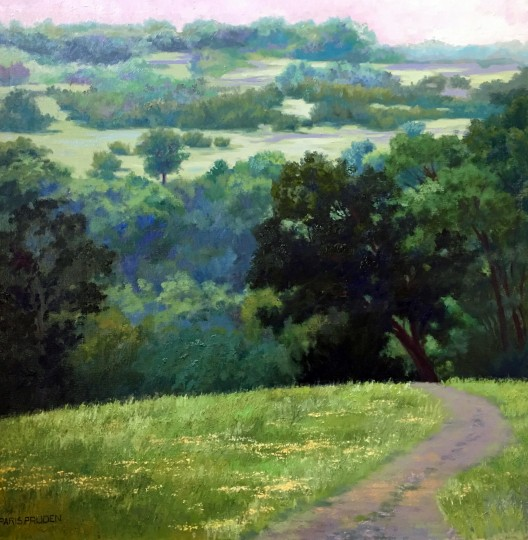Spring, Hill Country