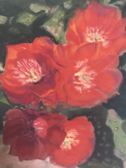 Five Cactus Flowers