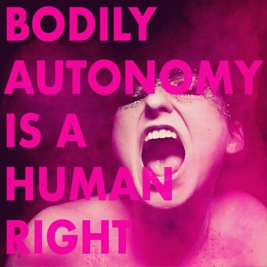 Bodily Autonomy is a Human Right: Louisiana Amendment 1