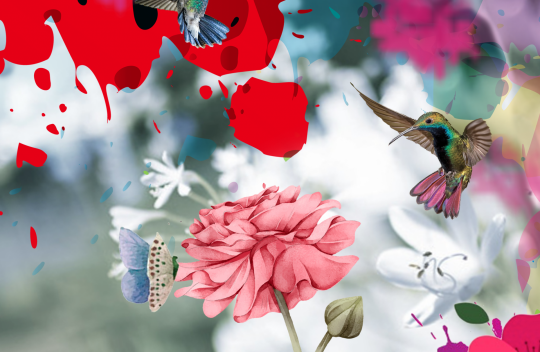 Birds & Butterflies II
